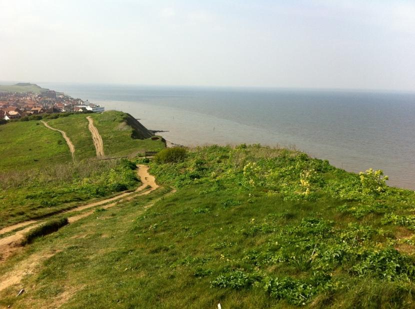 Cliffs overlooking Sheringham (is he?)