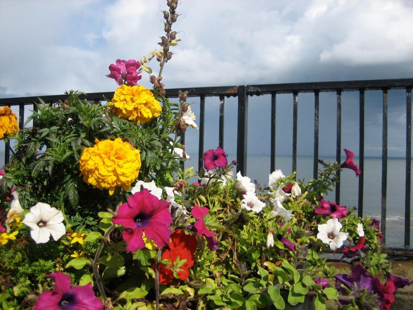Esplanade bouquet
